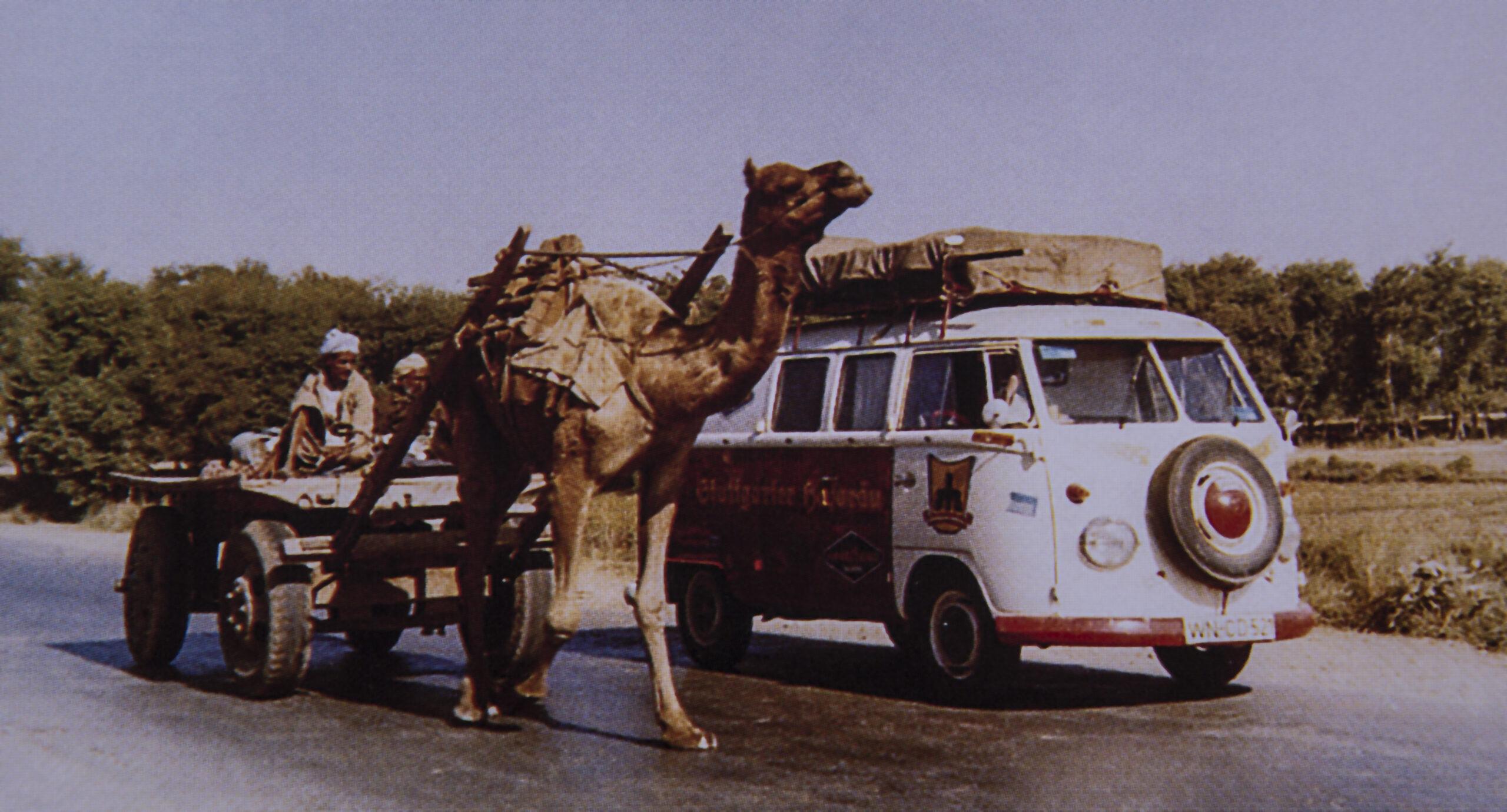 Im Nordwesten Indiens überholt der Bulli eines der Kamelgespanne