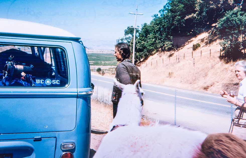 1980 begegnet den Hunswicks ein Lama als Anhalter auf dem Weg Richtung Sacramento bei Maine Prarie.